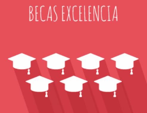 becas excelencia - Buscar con Google - Firefox Developer Edition-41-28